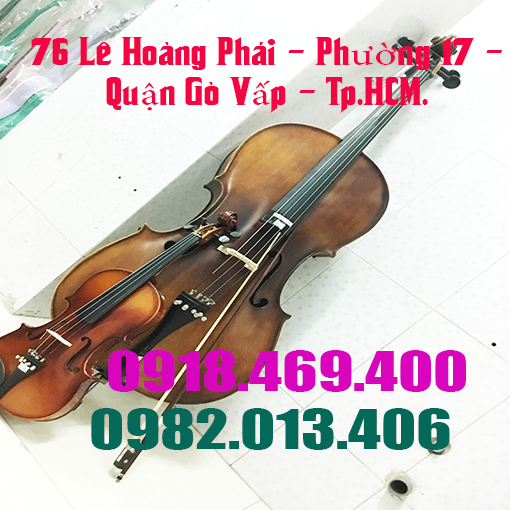 viet-thanh (20).png