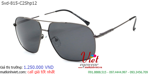 Svd-815-c2shp12-6110000-1250-gy0gyu (1).png